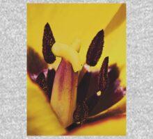 Macro red edged Picotee yellow Tulip Kids Clothes