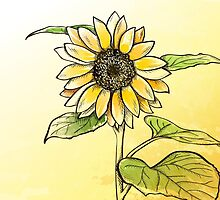 Hand drawn sunflower by Marta Jonina