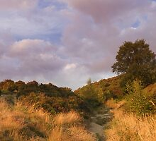 Norland moor at sunset by chris2766