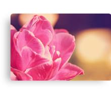 "Tulipa ""Lilac Perfection"" Canvas Print"
