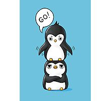 Penguins Photographic Print