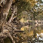 Murray River - Echuca by Frank Moroni