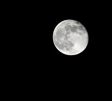 Super Moon 8/11/2014 by MJD Photography  Portraits and Abandoned Ruins