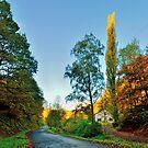 Route de la Lemmetrie by 242Digital