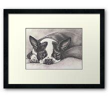 "Sleeping ""Lady"" Framed Print"