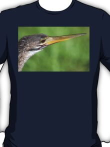 Anhinga in the Everglades T-Shirt