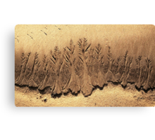 Sand Forest  Canvas Print