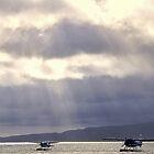 Sunbeams on Lake Rotorua, New Zealand by Norman Repacholi