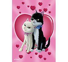 Romantic Cartoon cats on Valentine Heart  Photographic Print