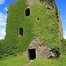 Dunollie Castle by RedHillDigital