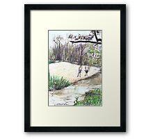 Innot Hot Springs Framed Print