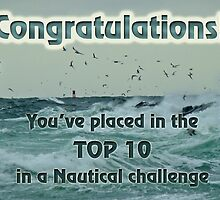 banner nautical challenge top10 by MotherNature