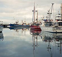 Winter—Victoria Dock, Hobart by Brett Rogers
