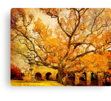 Autumn Oak Canvas Print