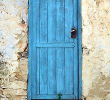 the aqua door by IOANNA PAPANIKOLAOU