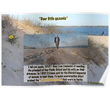 """Dear little gazanias"" --- but not always appreciated.  Poster"