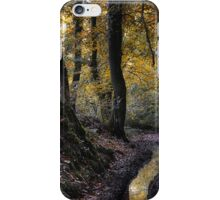 October Wood iPhone Case/Skin