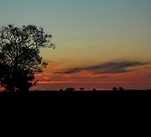 Murrumbidgee Sunset by Mark Cooper