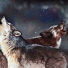 Enduring Spirits by Peter Williams