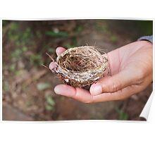 Tiny Nest Poster