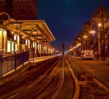 Metro Rail at twilight by Celeste Mookherjee