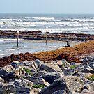 Galveston Island, Texas USA  by Mike Pesseackey (crimsontideguy)