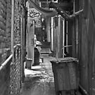 Urban Living in San Francisco - Chinatown Alley by Buckwhite