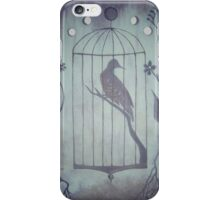 Bird Cage Moon Phases iPhone Case/Skin