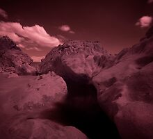 Infra Red - Dark Pool by rennaisance