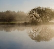 Beautiful Misty River Sunrise by Christina Rollo