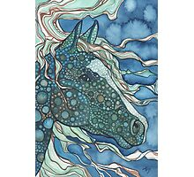 Midnight Horse Photographic Print