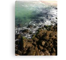 Sea Shore Canvas Print