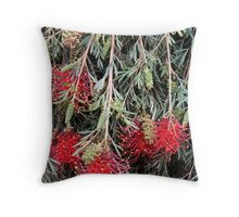 Weeping Grevillea - Ruby Red Throw Pillow