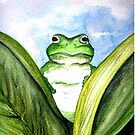 Peeping Frog  by © Linda Callaghan