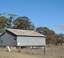 Outback Shed by ScenerybyDesign