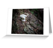 Stay Puft Marshmallow Man Lives! Greeting Card