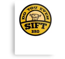 Do You Even Sift Bro? Metal Print