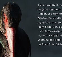 Talking Animals - Umwelt 4 by Thomas F. Gehrke