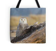 Snowy Owl in Evening Light Tote Bag