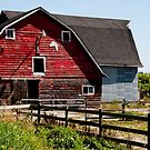 The Red Barn by Rae Tucker