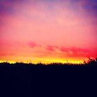 Summer Sunset by Selena Chaplin
