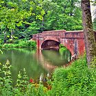 Biltmore Estate Bridge over Bass Pond by venny