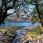 Loch Goil Argyll by Lynn Bolt