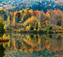 Fall Kaleidoscope Landscape by Christina Rollo