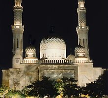 Jumeirah Mosque at Night by Timothy  Ruf