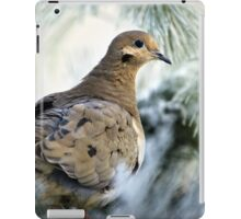 Winter Mourning Dove iPad Case/Skin