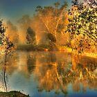 Murrumbidgee morning by Kevin McGennan
