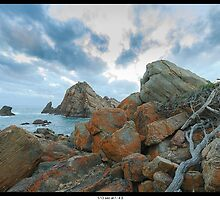 Driftwood on the rocks by johngill