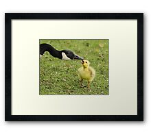 The teacher and the pupil Framed Print