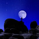 Moonrise Over White Tank Campground. by Alex Preiss